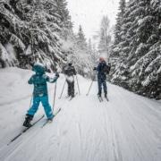 skiing injury