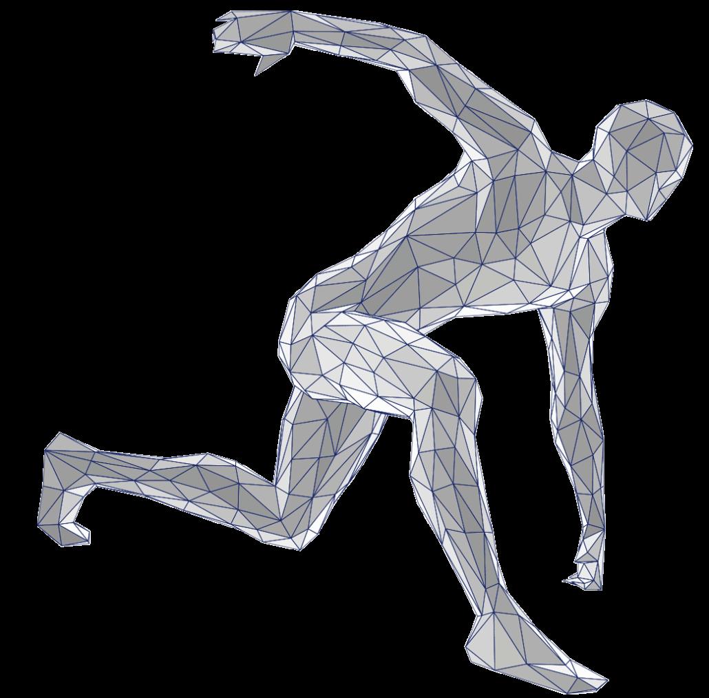 Body Wireframe